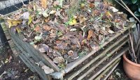 Was darf auf den Kompost, was nicht? Abfälle richtig kompostieren